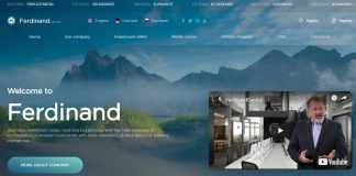 Ferdinand.capital Hyip Review : Is Paying Or Scam Read Our Review