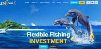 Flex.fish Hyip Review : Scam Or Paying Read Our Hyip Review