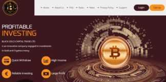 blackgold-capital.com