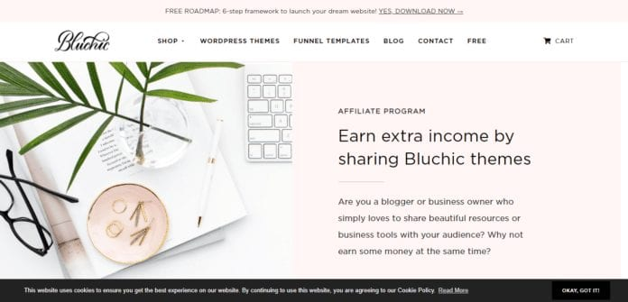 Bluchic.com Affiliate Program Review: Earn Extra Income by Sharing Bluchic Themes