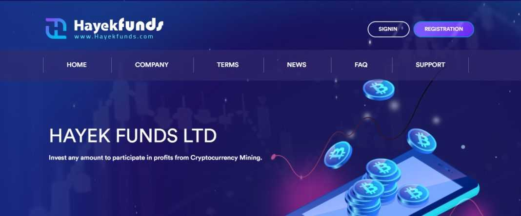 Hayekfunds.com Review: Scam Or Paying? Read Our Full Review