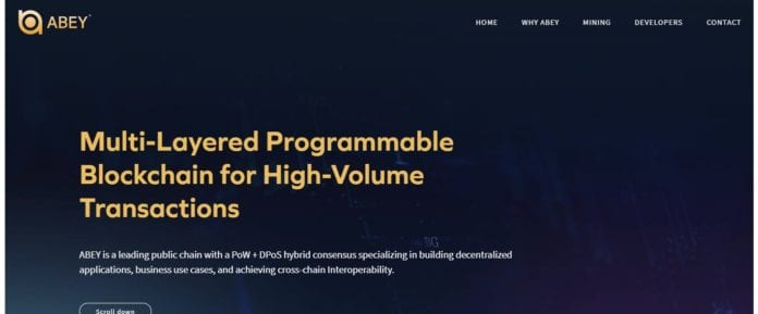 What Is Abey? Complete Guide & Review About Abey